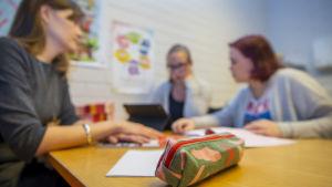 Private teacher Annie Hilotti and teacher Petra Rantanen guide Mimosa from Sweden