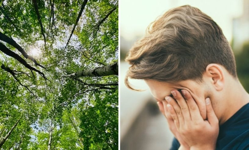 Tormented by pollen?  - 5 tips for dealing with dry eyes
