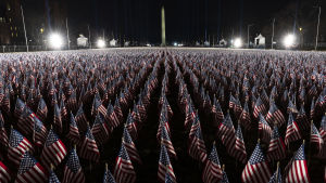 Thousands of flags of the United States displayed on a park outside the Capitolium.
