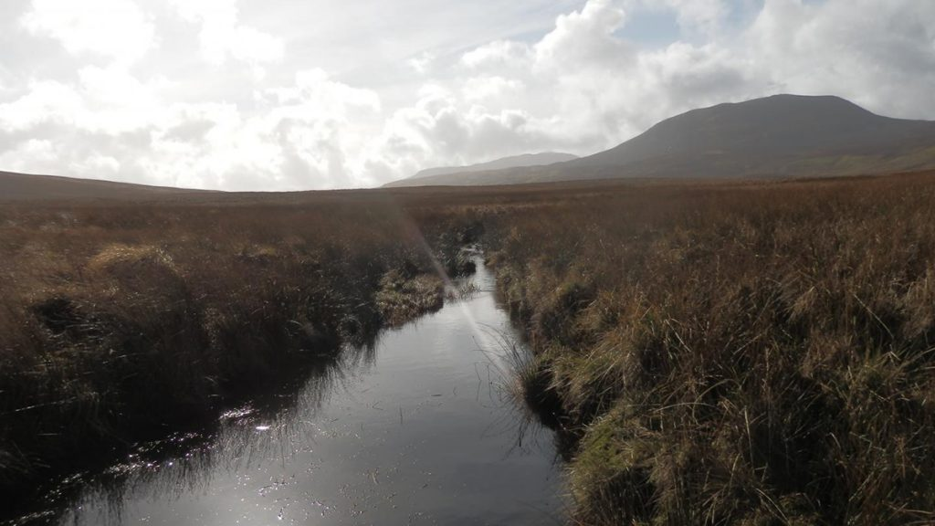 Reduced greenhouse gas emissions with reduced drainage depth |