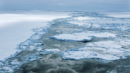 The Endurance sank in 1915 in the Weddell Sea in the Antarctic Ocean.