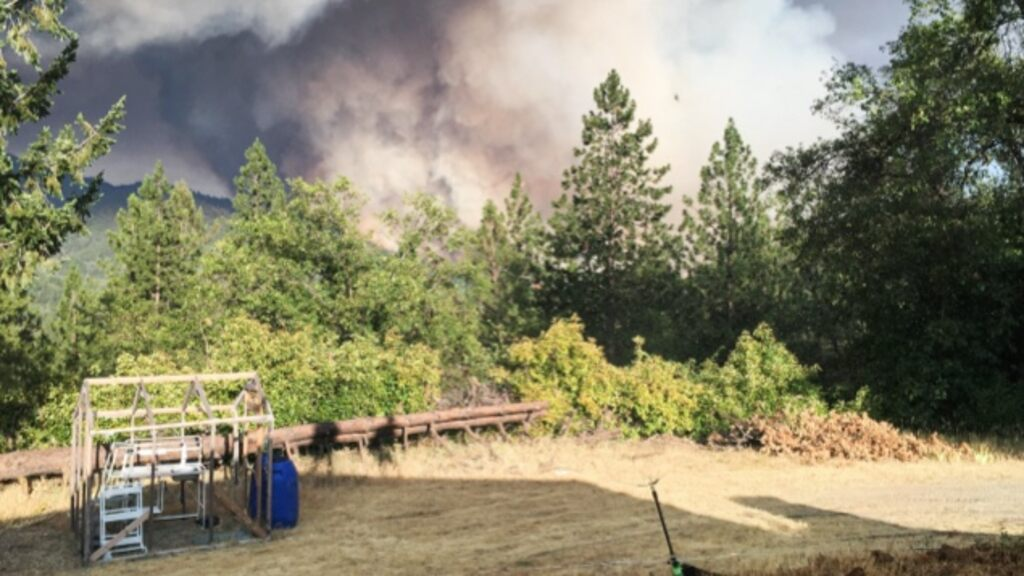 Forest fires force the couple to evacuate the farm and the animals