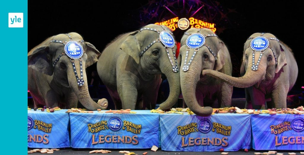 Closing of the Ringling Brothers Circus    Foreigner